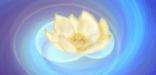 Семинар «Мистерии исцеления. Телесность и духовность»