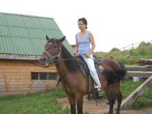 Психология и лошади
